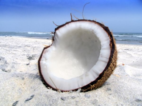 Health Benefit of Coconut milk: