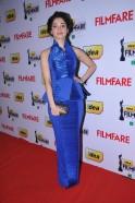 59th Idea Filmfare Awards 2011