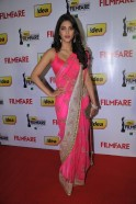 !dea Filmfare Awards 2011 (South)