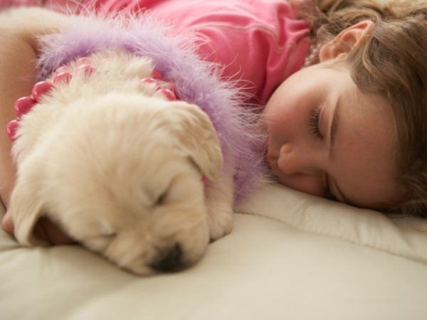 Does your dog get adequate sleep?