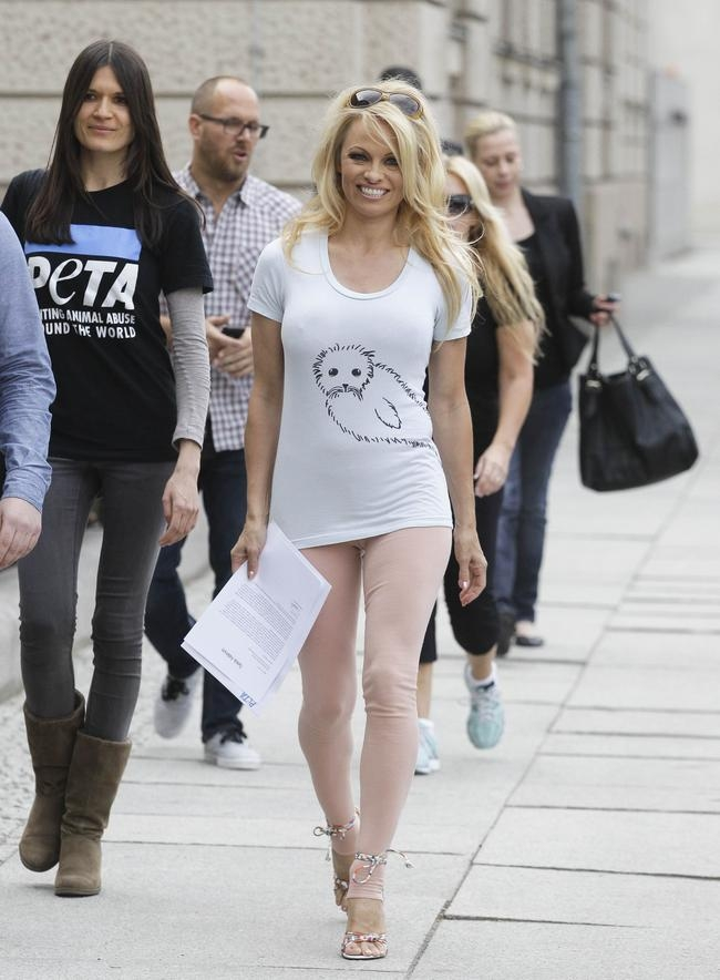 Pamela Anderson bats for seals