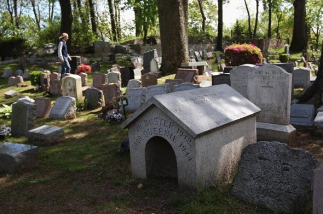 Hartsdale Pet Cemetery in Hartsdale, NY, provides the final resting place for tens of thousands of beloved domestic animals.