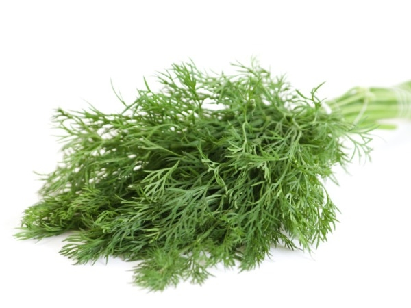 Dill Leaves (Suva/ Shepu)