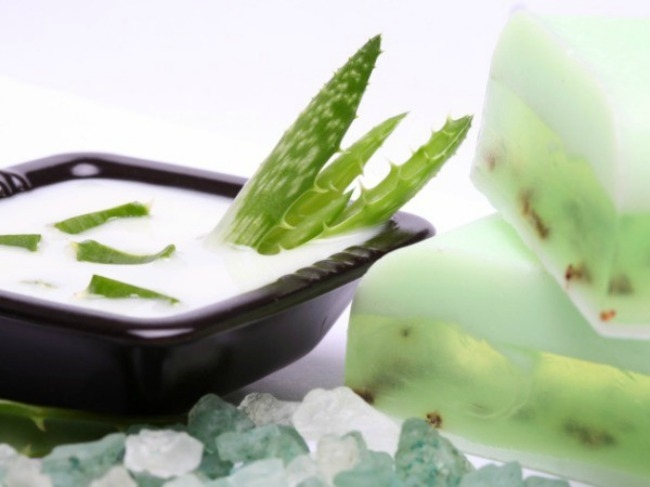Aloe vera has anti- microbial effect