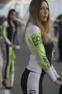 Grid Girls at MotoGP
