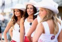 Grid Girls at V8 Supercar Championship