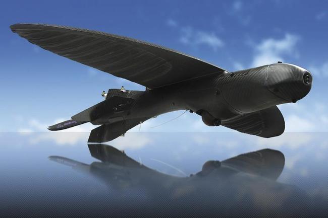 Condor Aerial's Maveric Drone