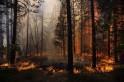 California Wildfires