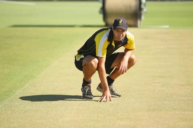 WACA Pitch Inspection