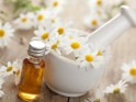 Essential Oil: Chamomile German Matricaria recutita