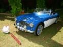 1957 Austin Healey 100-6