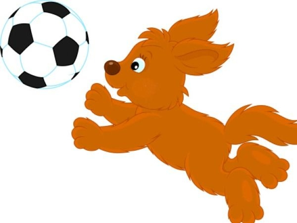 Workout with Your Pet # 7: Soccer