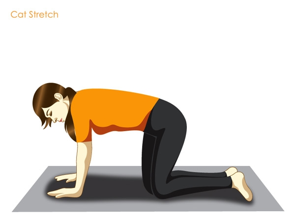 Cat Stretch (Marjariasana)