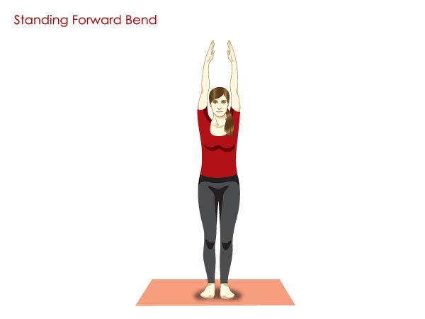 Forward Bend (Hastapadasana)