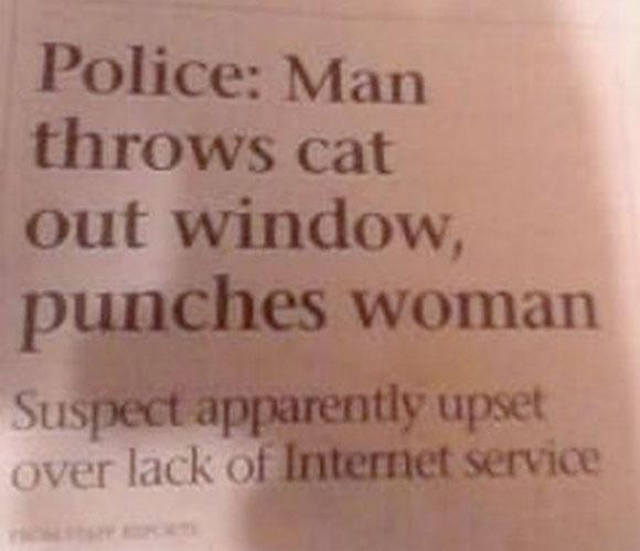 Police: Man throws cat out window, punches woman