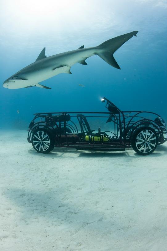 Volkswagen Beetle Shark Cage