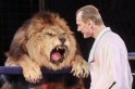 Rehearsals With the King of the Jungle