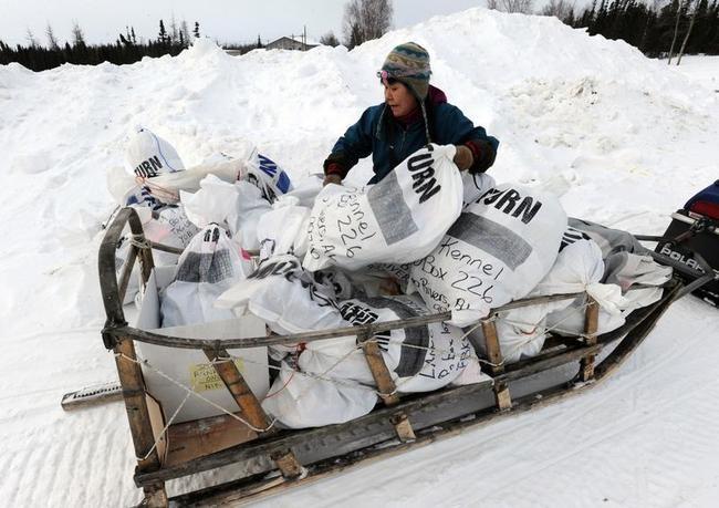 Iditarod Sled Dog Race