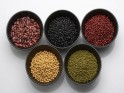 Foods to Live a Long Life : Lentils