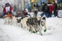 Iditarod Sled Dog Race in Alaska