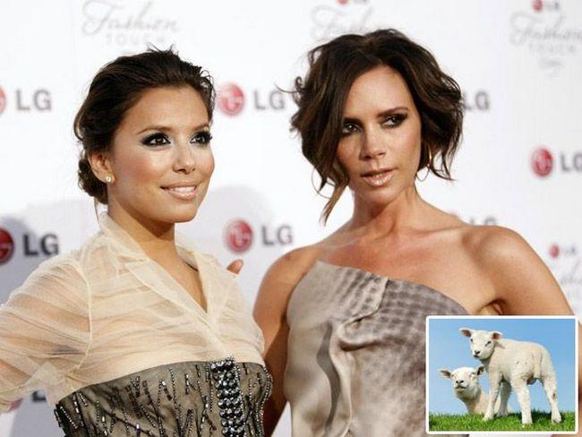 Eva and Victoria