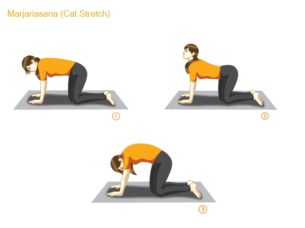 Yoga Postures for Weight loss : Yoga Poses to Lose Weight :Cat stretch