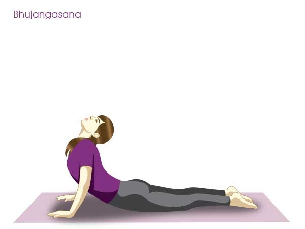 Yoga Postures for Weight loss : Yoga Poses to Lose Weight Cobra : Pose