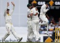 Siddle picks up Bell