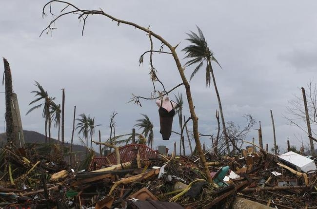 A mannequin hangs on a tree amidst debris brought by super typhoon Haiyan in Palo, Leyte province in central Philippines