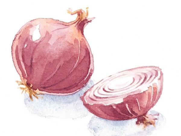 Onion Crisis: Top 5 Jokes on Onions