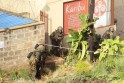 Kenya Defence Forces soldiers take cover behind walls near the Westgate shopping centre after an exchange of gunfire inside the mall in Nairobi