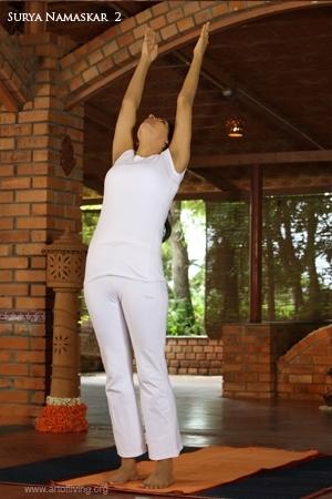 surya namaskar 12 yoga poses for weight loss  healthy