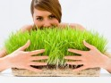 Healthy Eating: Examining the benefits of wheatgrass