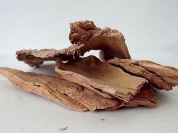 Home Remedies: Ayurevedic Treatments for Infertility Banyan tree bark