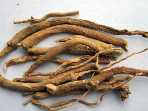 Home Remedies: Ayurvedic Treatments for Infertility Ashwagandha churna
