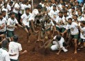 A villager tries to control a bull during a bull-taming festival on the outskirts of Madurai town