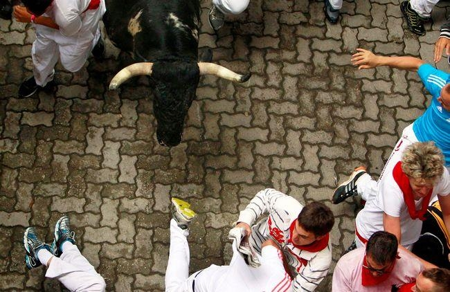 Runners sprint in front of a Torrestrella fighting bull at the entrance to the bullring during the first running of the bulls of the San Fermin festival in Pamplona