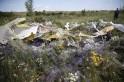 Malaysia Flight MH17 Crash Site