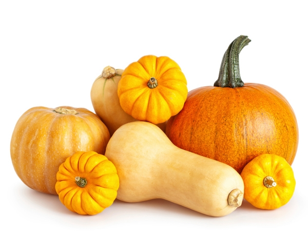 16 Healthy Foods for Your Dog Pumpkin